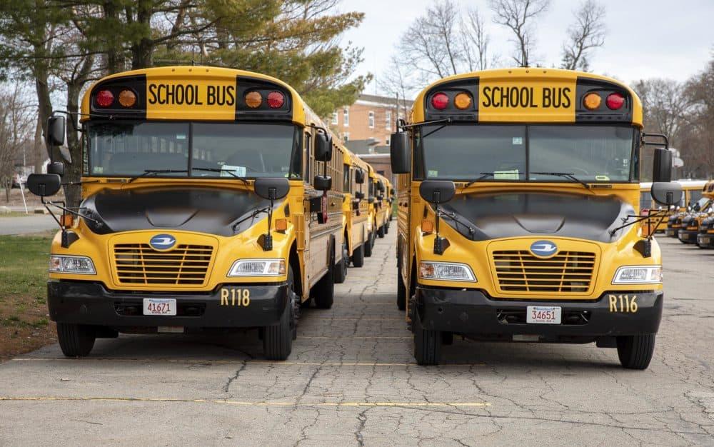 Randolph Public School buses parked behind the high school. Randolph High School ranked 114th in Boston Magazine's most recent ranking. (Robin Lubbock/WBUR)