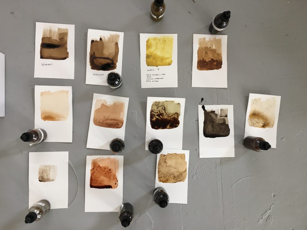 Digital artist and MassArt Professor Jane Marsching will teach a workshop making pigments from natural materials like plants and earth. (Courtesy Jane Marsching)