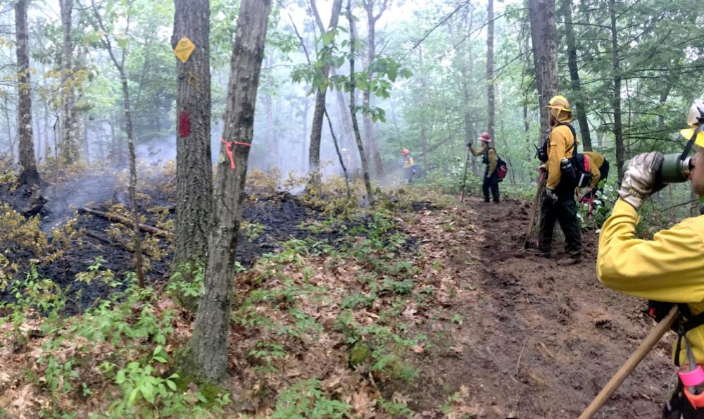 Firefighters work to contain a brush fire on Joshua Hill in Leverett, Mass., in August. (Courtesy MassWildlife)