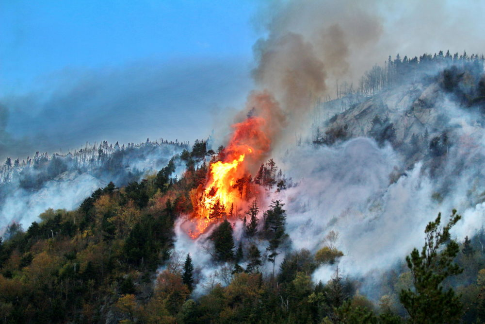 The Dilly Cliff Fire burned 75 acres in New Hampshire in 2017, after a similar prolonged drought to one taking place this summer. (Courtesy of Ken Watson/kenwatson.net via NHPR)