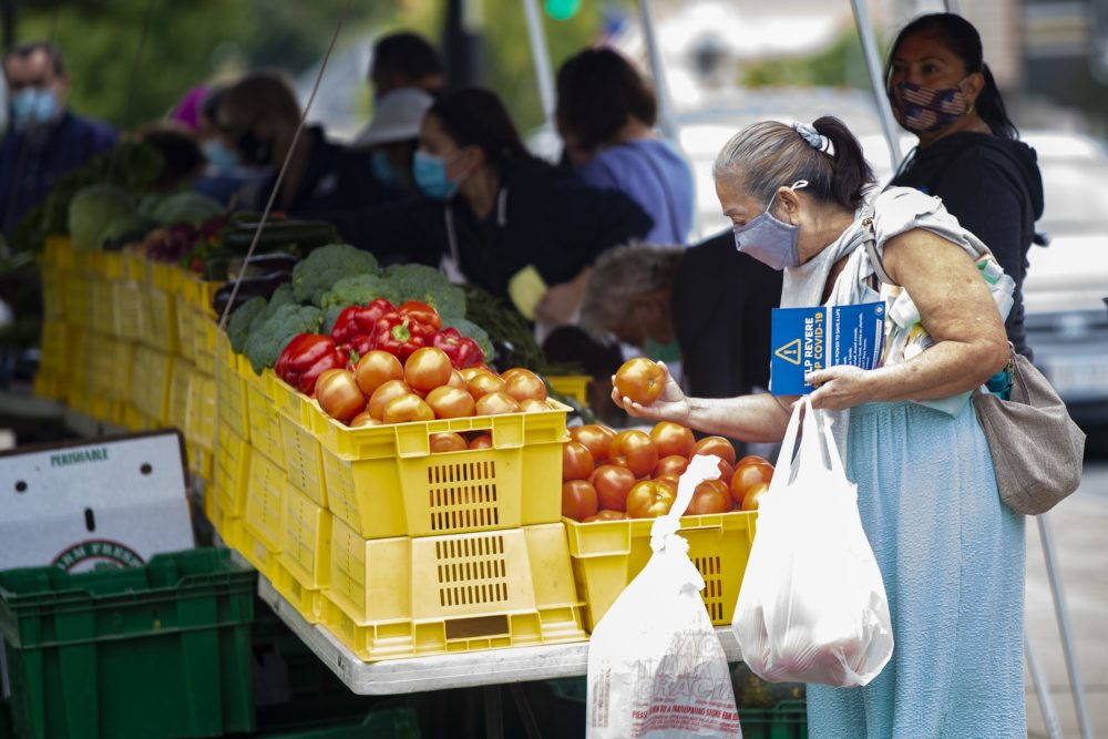 A woman browses through tomatoes at Revere's weekly farmers market. (Jesse Costa/WBUR)