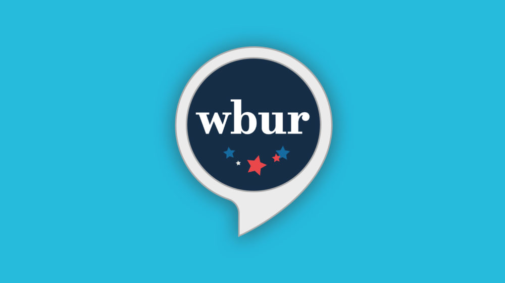 """Mass. Ballot Guide"" brings WBUR's explanatory election coverage to a new platform: voice. (Illustration by Jack Mitchell/WBUR)"