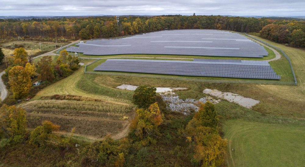 Solar panels cover the top field at Knowlton Farm. Soon work will start on an agrivoltaic array in the field below them. (Robin Lubbock/WBUR)