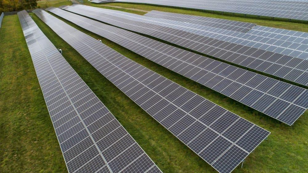 Solar panels in a field at Knowlton Farm, Grafton, Mass. (Robin Lubbock/WBUR)