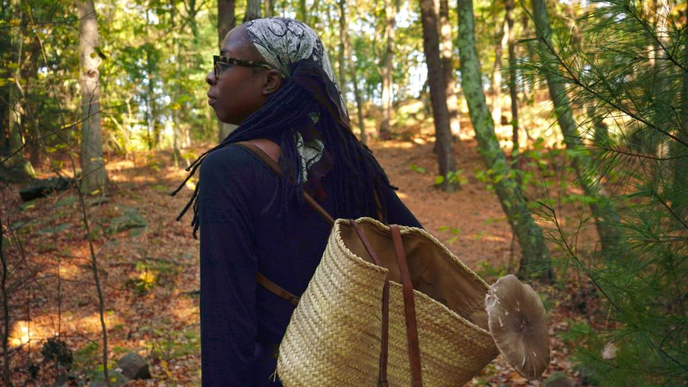Maria Pinto leads groups into the woods on mushroom foraging trips. (Arielle Gray/ WBUR)