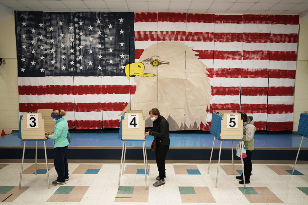 Voters cast their ballots under a giant mural at Robious Elementary school on Election Day, in Midlothian, Va., Tuesday Nov. 3, 2020. (Steve Helber/AP)