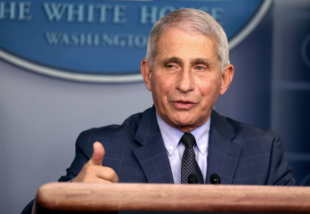 Dr. Anthony Fauci, director of the National Institute of Allergy and Infectious Diseases, speaks during a White House Coronavirus Task Force press briefing at the White House on November 19, 2020. (Tasos Katopodis/Getty Images)