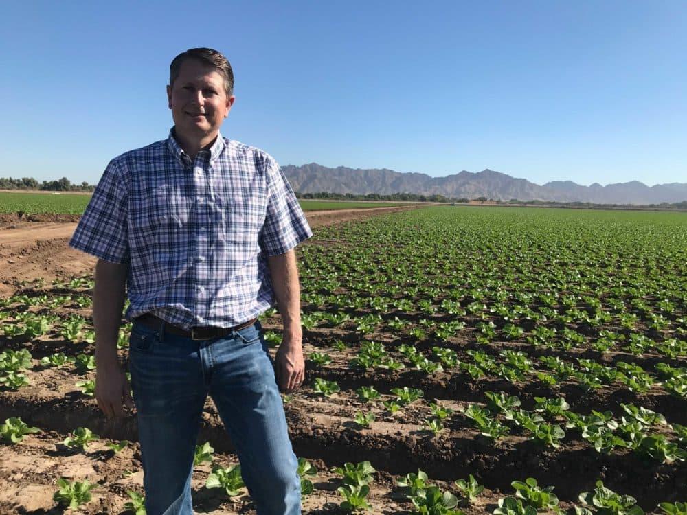 Jon Boelts, a lettuce farmer in Yuma, Arizona. (Peter O'Dowd/Here & Now)