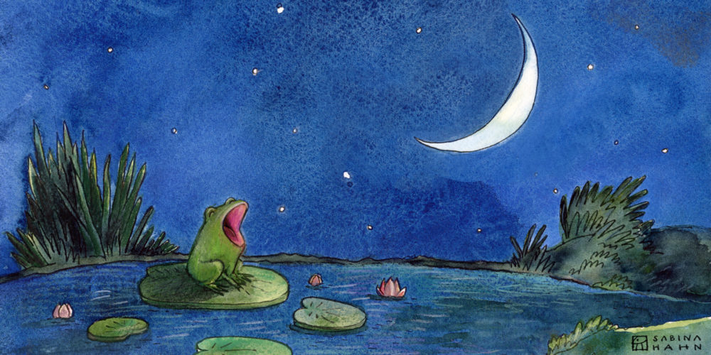 "(""Little Frog's Big Voice"" by Sabina Hahn)"