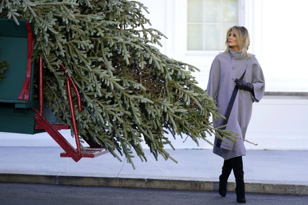 First lady Melania Trump walks around the 2020 official White House Christmas tree after it arrived at the White House in Washington, Monday, Nov. 23, 2020. This year's tree is an 18.5-foot Fraser Fir, selected and cut from Dan and Bryan Trees in Shepherdstown, W. Va. (Andrew Harnik/AP