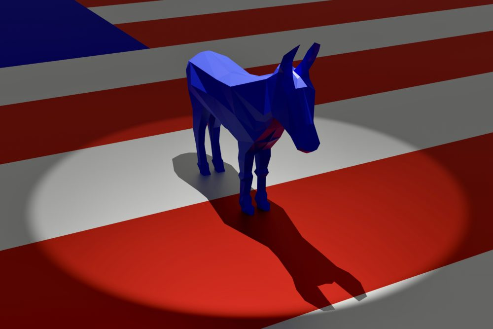 After 2020's election turned out not to be a banner year for Democrats as expected, the party is grappling with its messaging. (Getty)