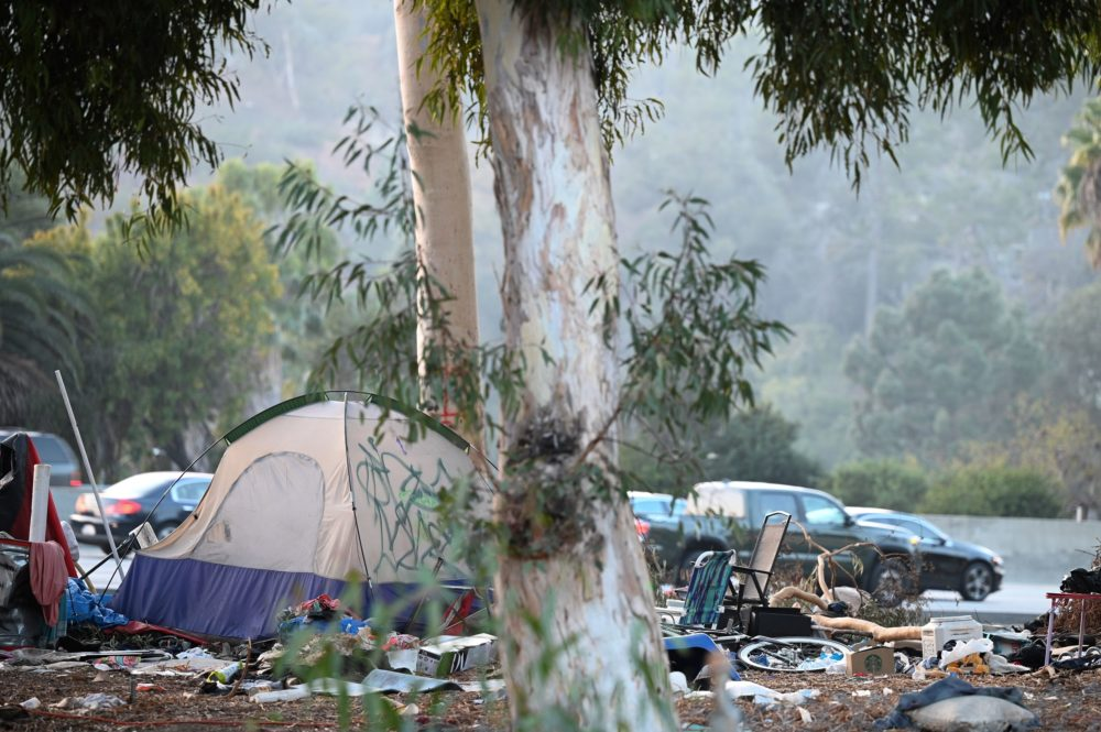 A homeless encampment is seen along a freeway in Hollywood, California, November 23, 2020. (Photo by Robyn Beck / AFP via Getty Images)