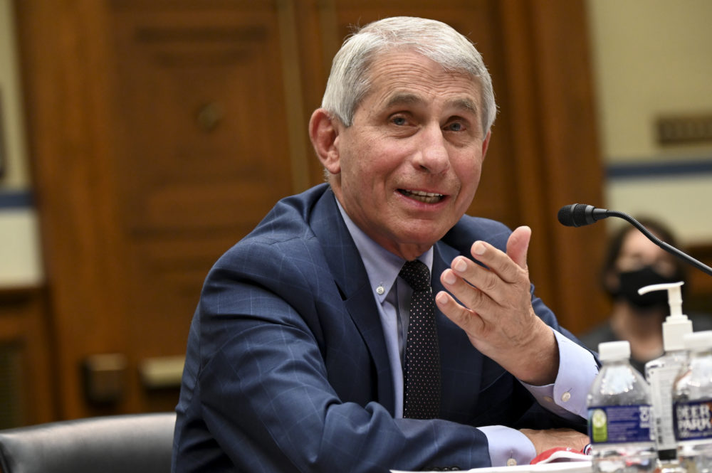 Director of the National Institute of Allergy and Infectious Diseases Dr. Anthony Fauci. (Erin Scott-Pool/Getty Images)