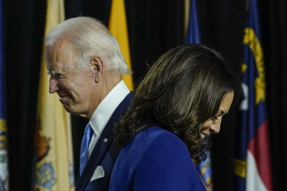 Joe Biden and Kamala Harris deliver remarks at the Alexis Dupont High School on August 12, 2020 in Wilmington, Delaware. (Drew Angerer/Getty Images)