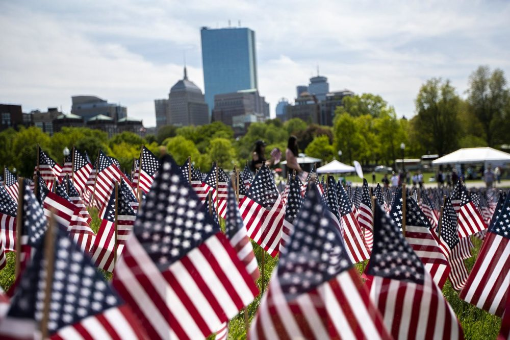 More than 37,000 American flags were planted at the annual Massachusetts Military Heroes Flag Planting at the Boston Common in May 2020. (Jesse Costa/WBUR)