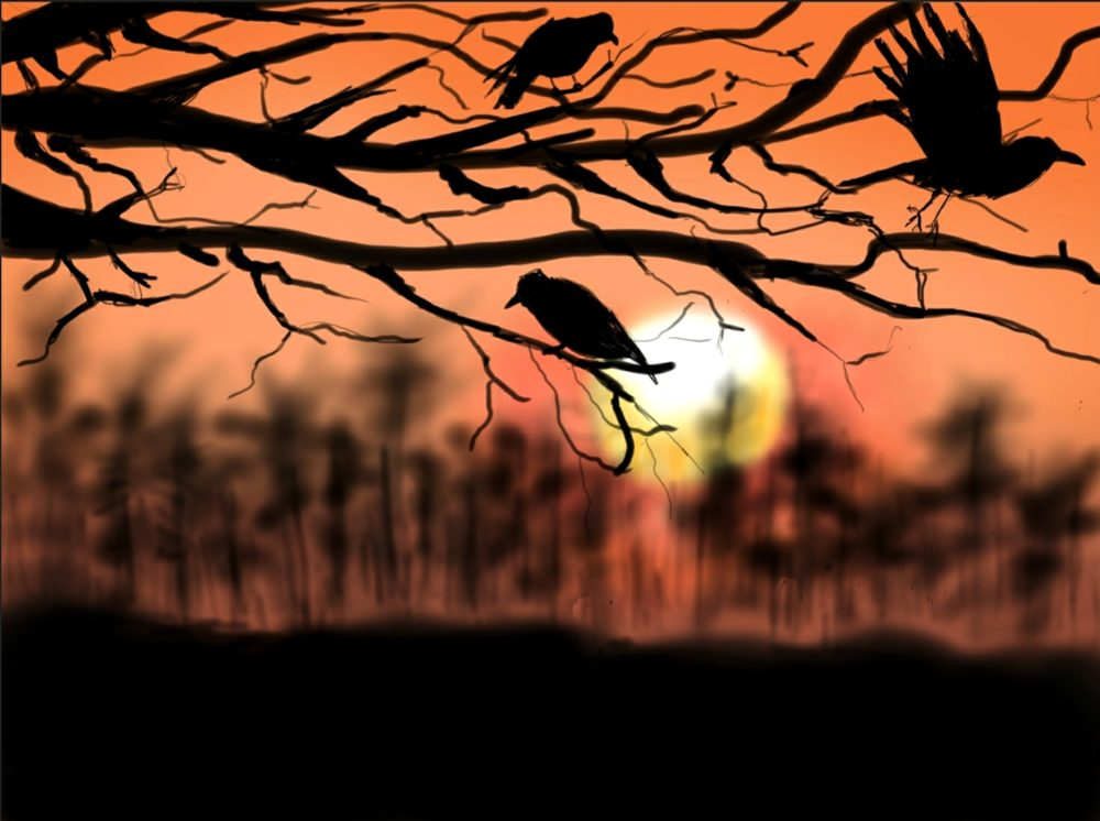 """""""Sunset crows"""" by u/Handicappedfruit"""
