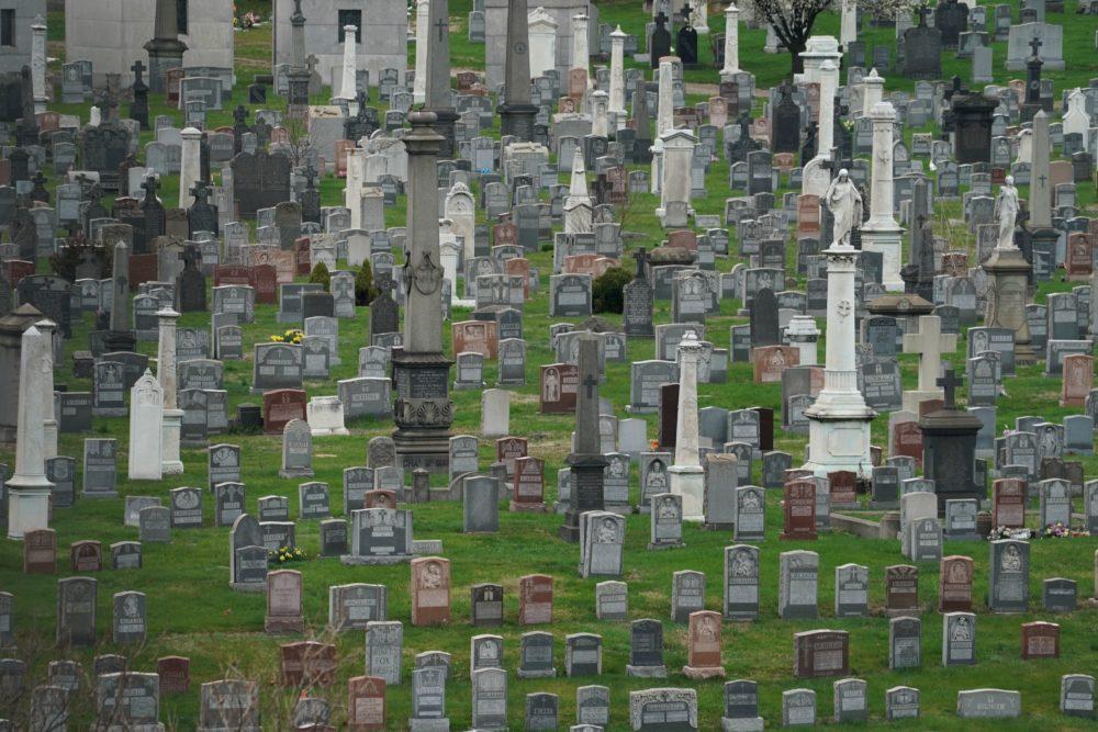 Headstones in Calvary Cemetery in the Borough of Queens in New York (Bryan R. Smith/AFP via Getty Images)