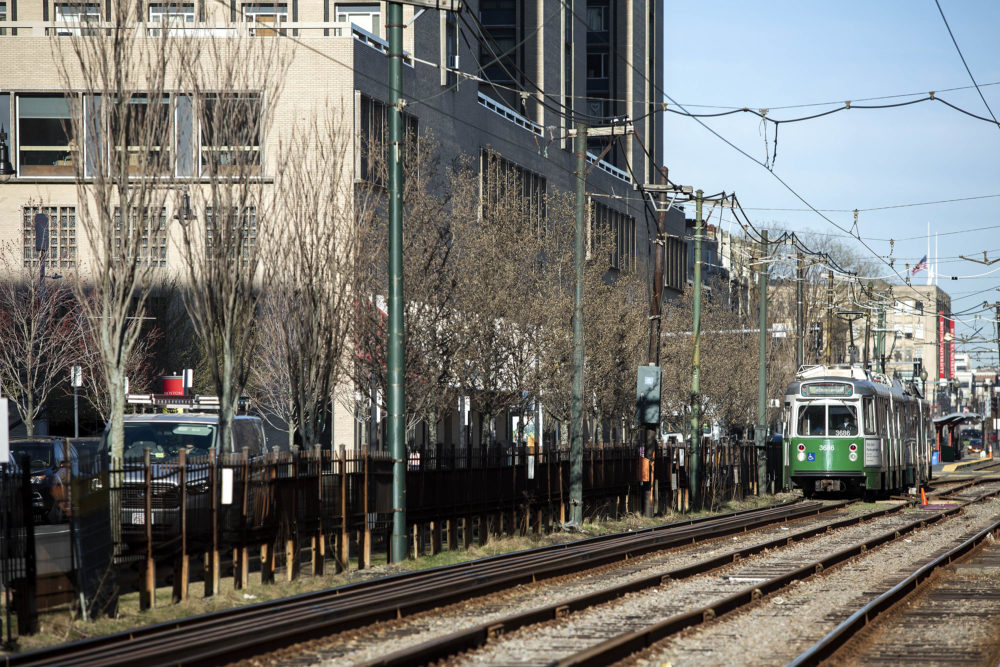 Trees line the Green Line tracks on Commonwealth Avenue. (Robin Lubbock/WBUR)