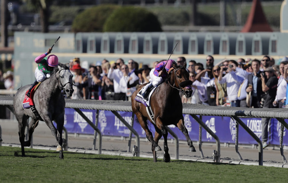 Pure Sensation ridden by Kendrick Carmouche (left) at the Breeders' Cup Turf Sprint horse race at Santa Anita Park, Saturday, Nov. 5, 2016, in Arcadia, Calif. (Jae C. Hong/AP)