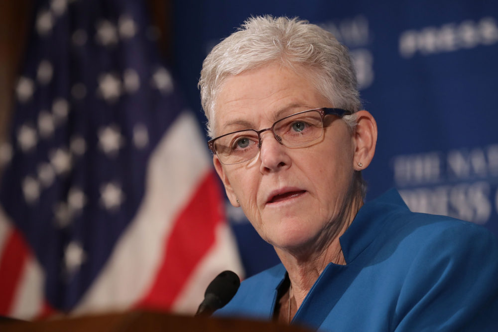 Gina McCarthy (Chip Somodevilla/Getty Images)