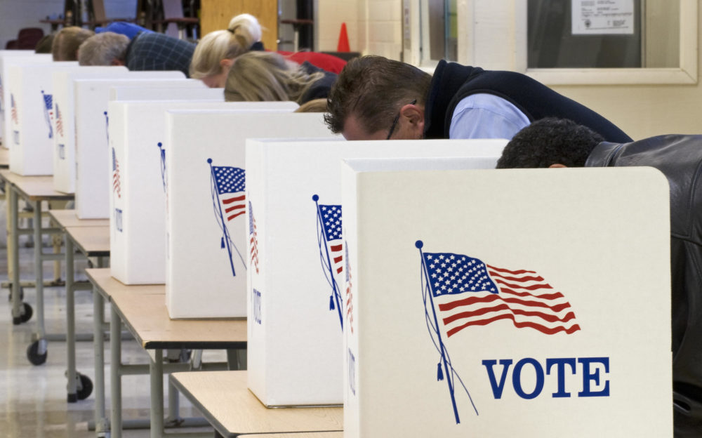 Voters cast their ballots on Election Day. (Paul J. Richards/AFP via Getty Images)