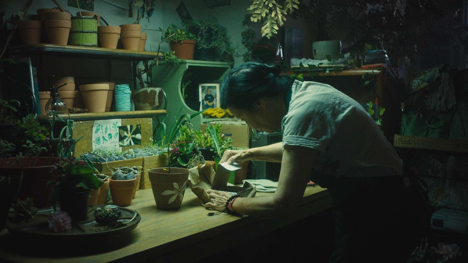 """The Sentient.Omnibus project will screen """"In Full Bloom"""" in June.  The film follows a Vietnamese immigrant mourning the loss of her partner. (Courtesy Maegan Houang)"""