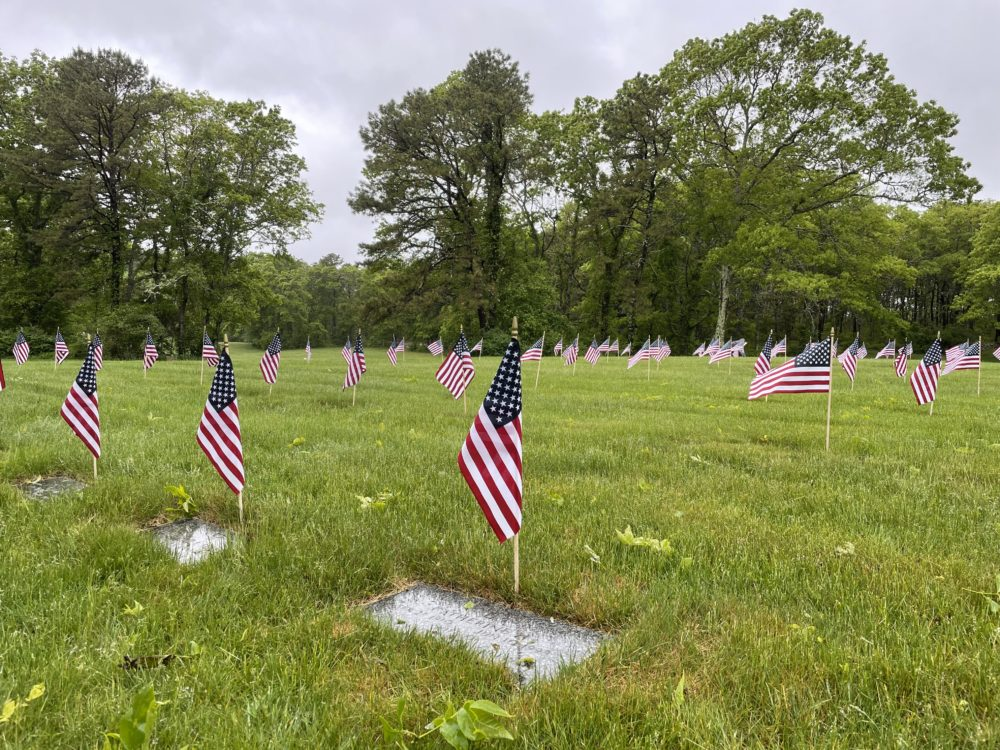 Operation Flags for Vets (Alex Ashlock/Here & Now)