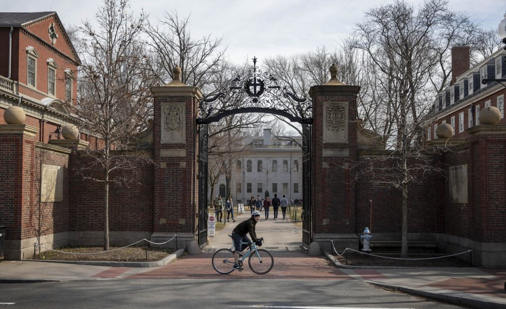 A cyclist rides past the Johnston Gate entrance to Harvard Yard. (Robin Lubbock/WBUR)