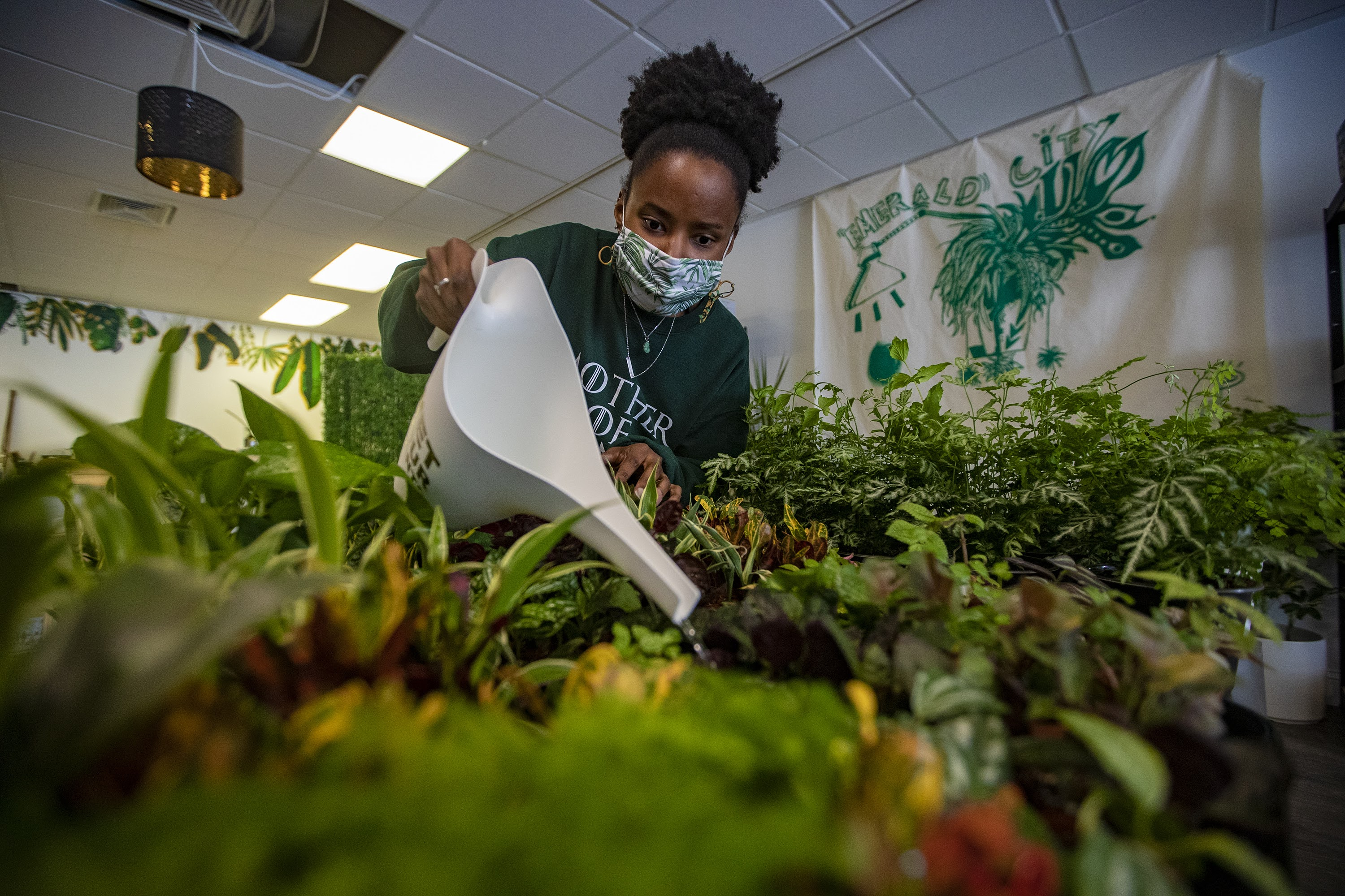 Quontay Turner watering plants at the Emerald City Plant Shop in Norwood. (Jesse Costa/WBUR)