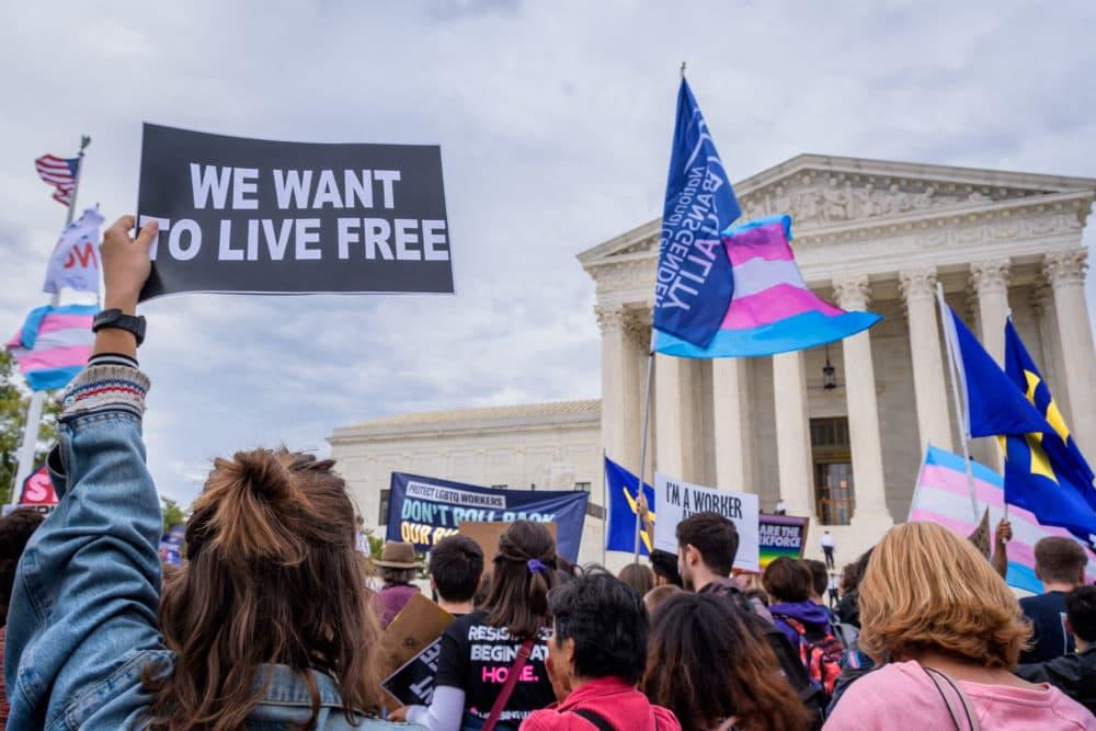 An activist holding a sign outside the Supreme Court in 2019. (Erik McGregor/LightRocket via Getty Images)
