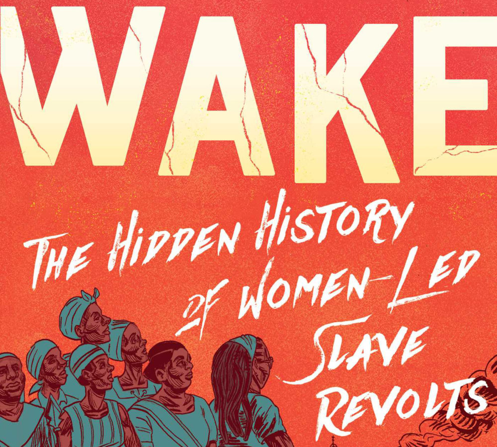 """""""Wake: The Hidden History of Women-Led Slave Revolts"""" by Rebecca Hall. (Simon & Schuster)"""