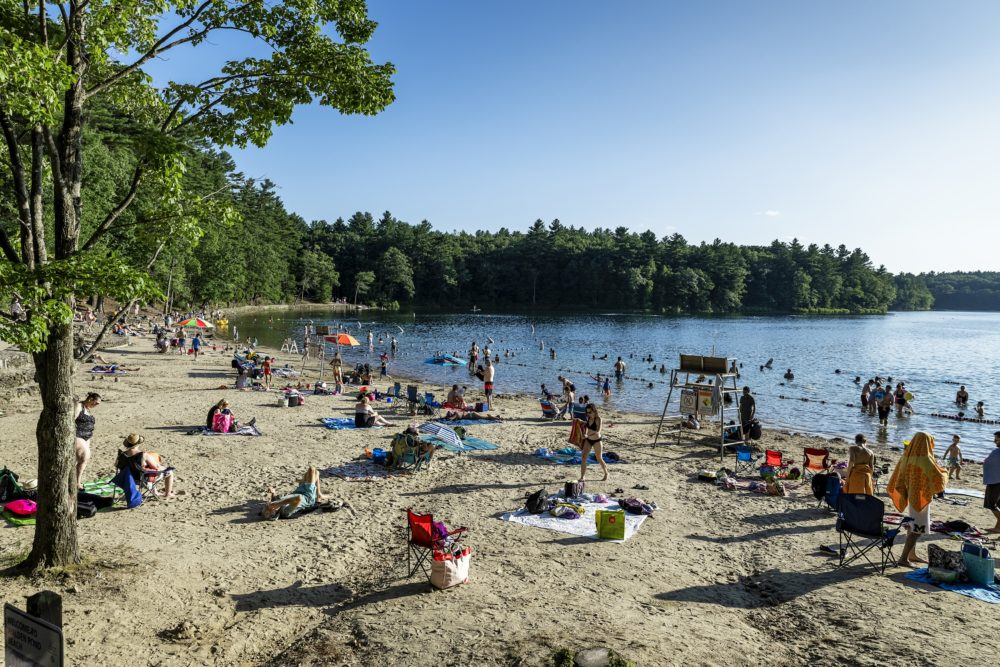 Walden Pond beach in Concord, Mass in 2019. (John Greim/Loop Images/Universal Images Group via Getty Images)