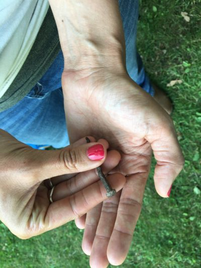 Bonney Hartley holds a square-head nail, probably made by an 18th-century blacksmith, found at an archaeological dig in Stockbridge, Massachusetts. (Nancy Eve Cohen/NEPM)