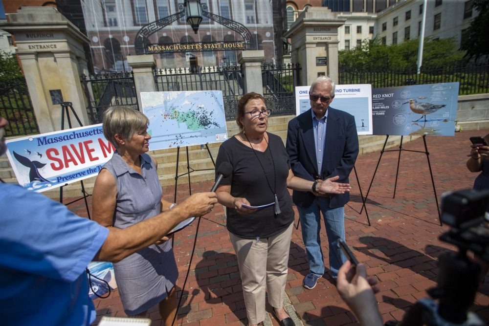 Vallorie Oliver, director of Nantucket Residents Against Turbines, speaks during a press conference in front of the State House Wednesday. (Jesse Costa/WBUR)