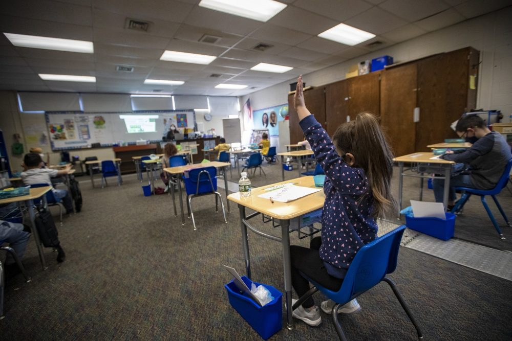 A student at Barbieri Elementary School in Framingham raises her hand in March of 2021. All children in public schools in Massachusetts must wear a mask until Nov. 1, under a state mandate. (Jesse Costa/WBUR)